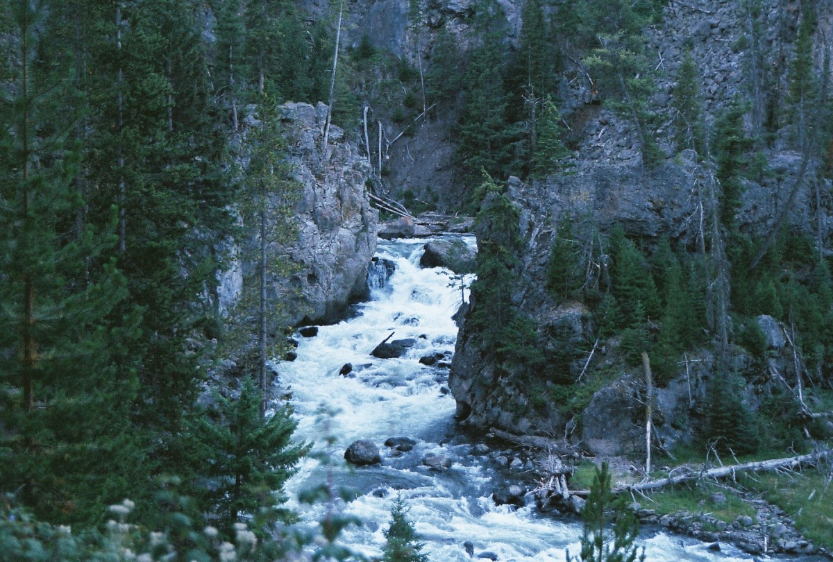 yellowstone national park travel guide free