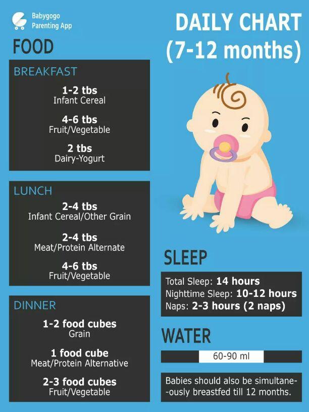 food guide for 6 month old baby