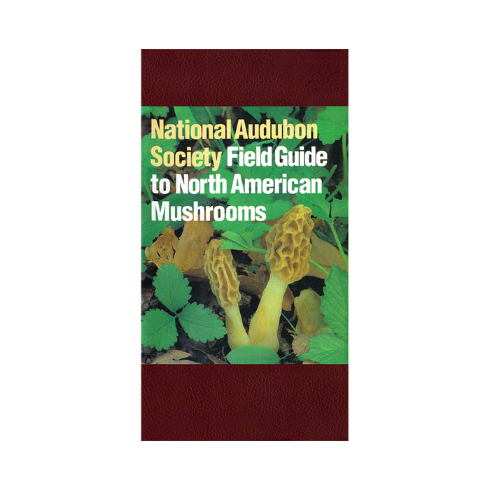 a field guide to mushrooms north america