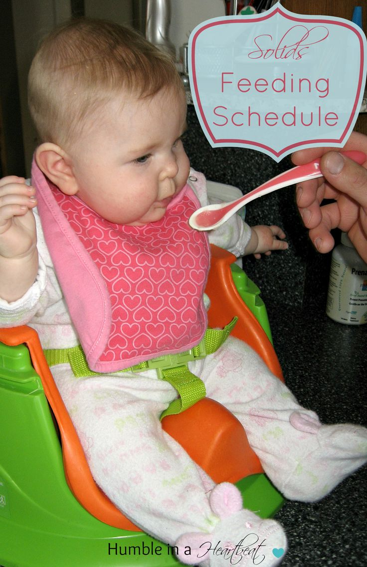 7 month old feeding guide