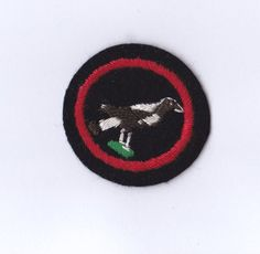 where to sew guide badges