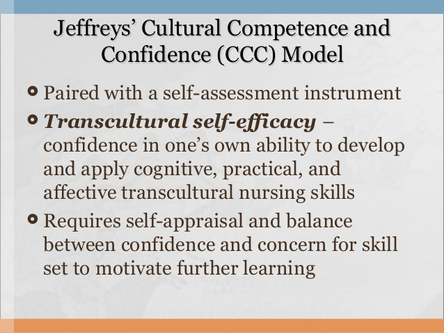 cultural competence in healthcare a practical guide