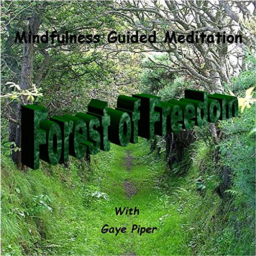 guided meditation walking through the forest