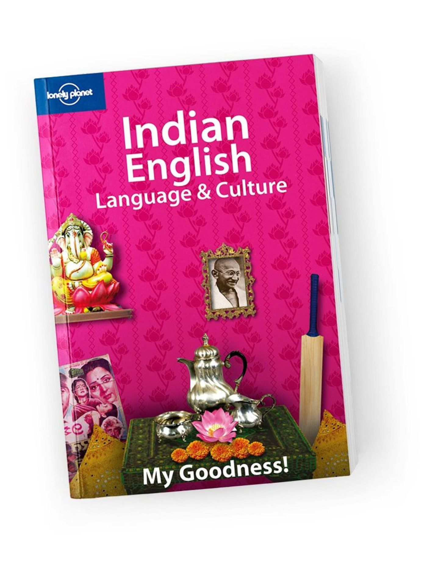 lonely planet guide to india