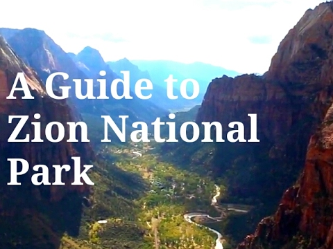 lamington national park visitor guide